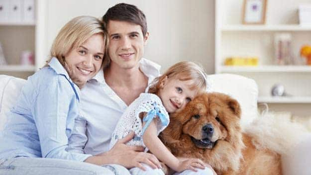 Wills & Trusts dog-young-family Direct Wills Barnet